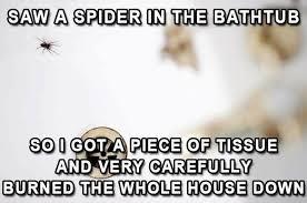 I Saw A Spider Meme - spider burn house down meme house plan 2017