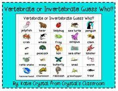 free printable worksheets vertebrates invertebrates free vertebrates invertebrates printables montessori pinterest
