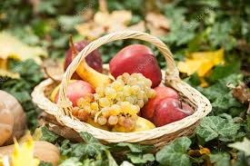 different fruits and vegetables in basket on green grass autumn