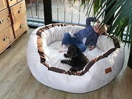 canapé lit pour chien canapé pour chien grande taille acheter les meilleurs modèles pour