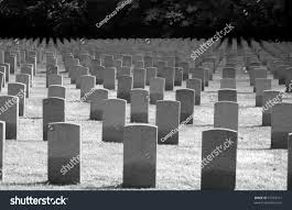 pictures of tombstones rows tombstones war stock photo 37503721