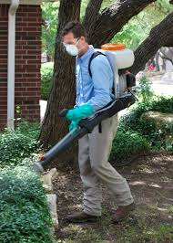 austin mosquito control organic pest control chem free