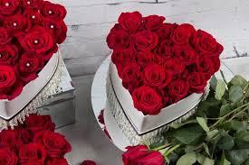 preserved roses preserved roses roses