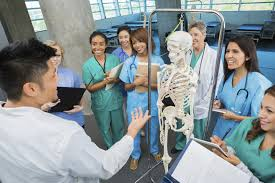 best job in the medical field choose a medical career to suit your personality top medical