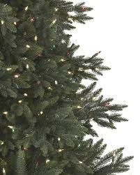 balsam hill color clear lights colorado mountain spruce tree balsam hill