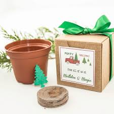12 seed paper christmas tree gift boxed holiday party favor