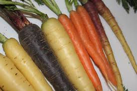 the many colours of carrot roots