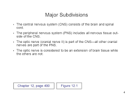 Principles Of Anatomy And Physiology 13th Edition Tortora Nervous System Organization 2 Much Of The Text Material Is From