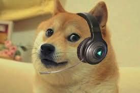 Shibe Meme Maker - doge cs go meme generator imgflip