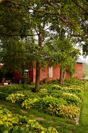 pictures of landscaping home design astounding beautiful landscaping pictures image ideas