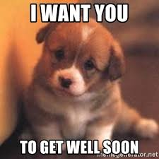Funny Get Well Soon Memes - get well soon puppy meme mne vse pohuj