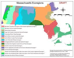 Massachusetts forest images Forest management planning masswildlife jpg