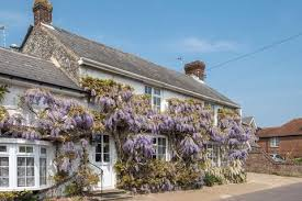 Isle Of Wight Cottages by Search Cottages For Sale In Isle Of Wight Onthemarket