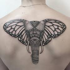elephant with butterfly ears designs