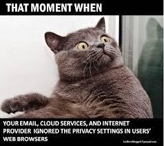Web Browser Meme - humor i ve been mugged blog