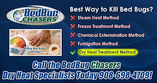 Will Heat Kill Bed Bugs Bedbug Chasers Of New Jersey Bed Bug Heat Treatment Nj