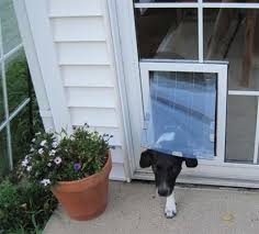 pet doors for sliding glass door in the glass maxseal pet door through glass dog door pet door