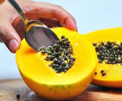 health benefits of papaya seeds hb times