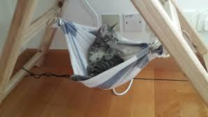 bedroom hammock for cats diy cat hammock hammocks for cage cats