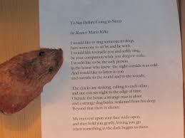 the night before thanksgiving poem to say before going to sleep poem elf