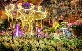 flowers colorful beauty house tulip lights vegas las amazing