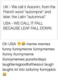 What Does Meme Mean In French - uk we call it autumn from the french word autompne and later the