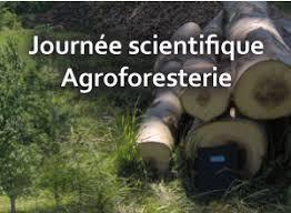 bureau d udes environnement journée scientifique agroforesterie