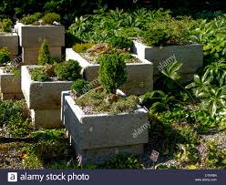 Garden Wall Troughs by Flower Trough Stock Photos U0026 Flower Trough Stock Images Alamy