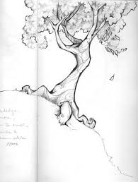 best 25 tree drawings ideas on pinterest trees drawing tutorial