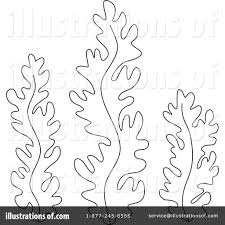 seaweed coloring pages eson me