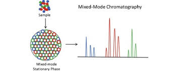 mixed mode chromatography in pharmaceutical and biopharmaceutical