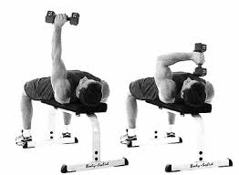 Good Weight For Dumbbell Bench Press Dumbbell Exercises To Beef Up Your Triceps Men U0027s Health Singapore