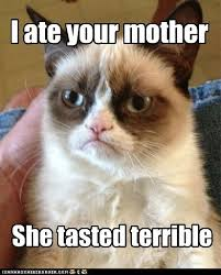 Happy Mothers Day Funny Meme - happy mother s day from grumpy cat memebase funny memes