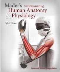 Human Anatomy And Physiology Pdf File Introduction To Human Anatomy Pdf Human Anatomy And Physiology
