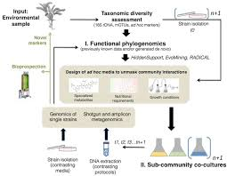 frontiers increasing metagenomic resolution of microbiome