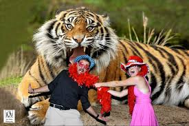 Toledo Zoo Halloween 2014 by Kurt Nielsen Photography News Learn About What Is Going On With