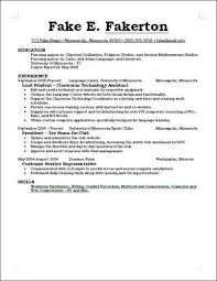 Resume Additional Skills Examples Download What Should I Put On My Resume Haadyaooverbayresort Com