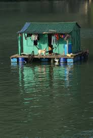 68 best houseboats images on pinterest houseboats floating
