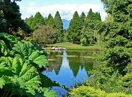 vandusen botanical garden wikipedia