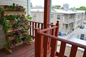apartment patio vegetable garden innovative patio vegetable garden