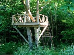 read more tree houses