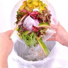 comment faire partir des moucherons dans une cuisine comment faire compost en appartement magazine avantages