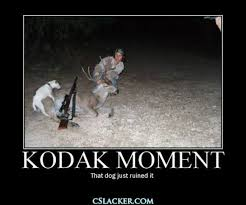 Hunting Meme - 30 most funniest hunting meme pictures and images