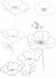 Flowers Designs For Drawing The Mega List Of Floral Drawing Tutorials Floral Drawing
