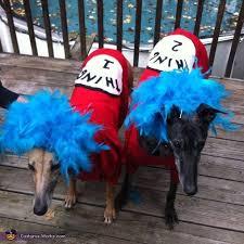 Halloween Costumes 1 2 91 Pet Costumes Halloween Images Pet
