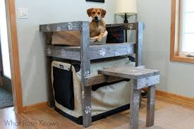 Bunk Bed For Dogs Bunk Bed Idea What Knows