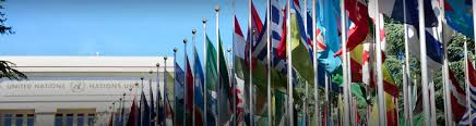 Icc Flag Business And The United Nations Icc International Chamber Of
