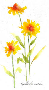Color Painting by 92 Best Painting Water Color Images On Pinterest Inge Look