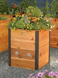 Corrugated Metal Garden Beds Mail Order Raised Beds Hgtv