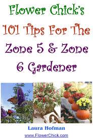 flower gardening 101 101 gardening tips for zone 5 u0026 6